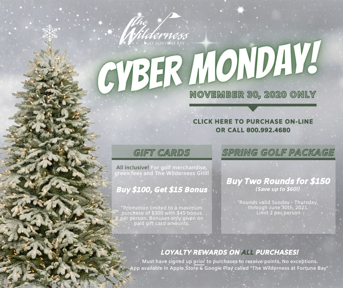 Cyber Monday Hover Ad 2020